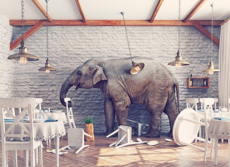 PLM Platform Upgrade: The Elephant in the Room